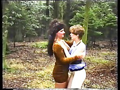 The Cougars In The Woods