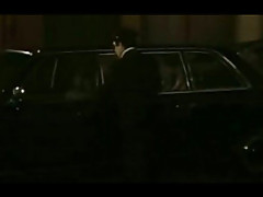 Tracey Adams Fucked In A Limo In Fur